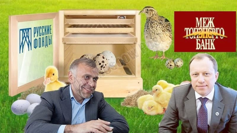 """Mezhtopenergobank's millions surfaced in """"poultry house"""""""